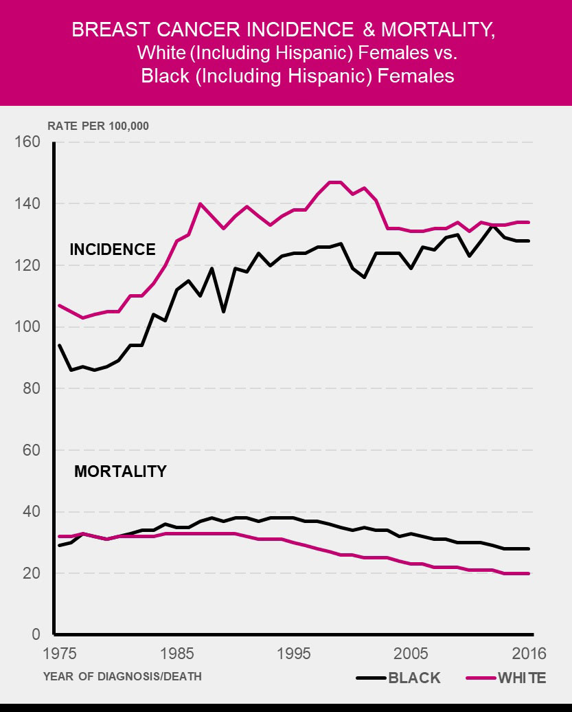 Figure 1.2 Breast Cancer Incidence and Mortality Between Black Women and White Women