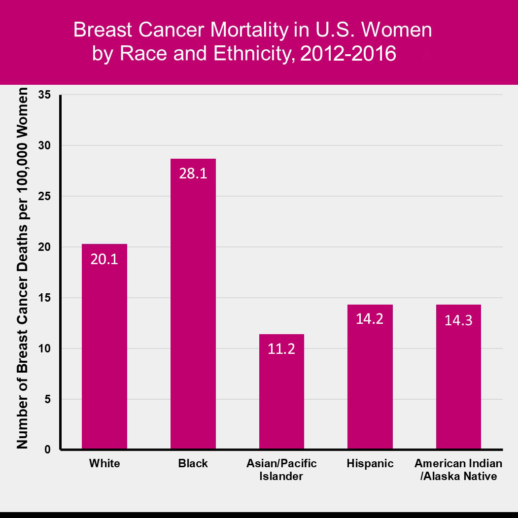 Figure 1.8 Female Breast Cancer Mortality by Race and Ethnicity